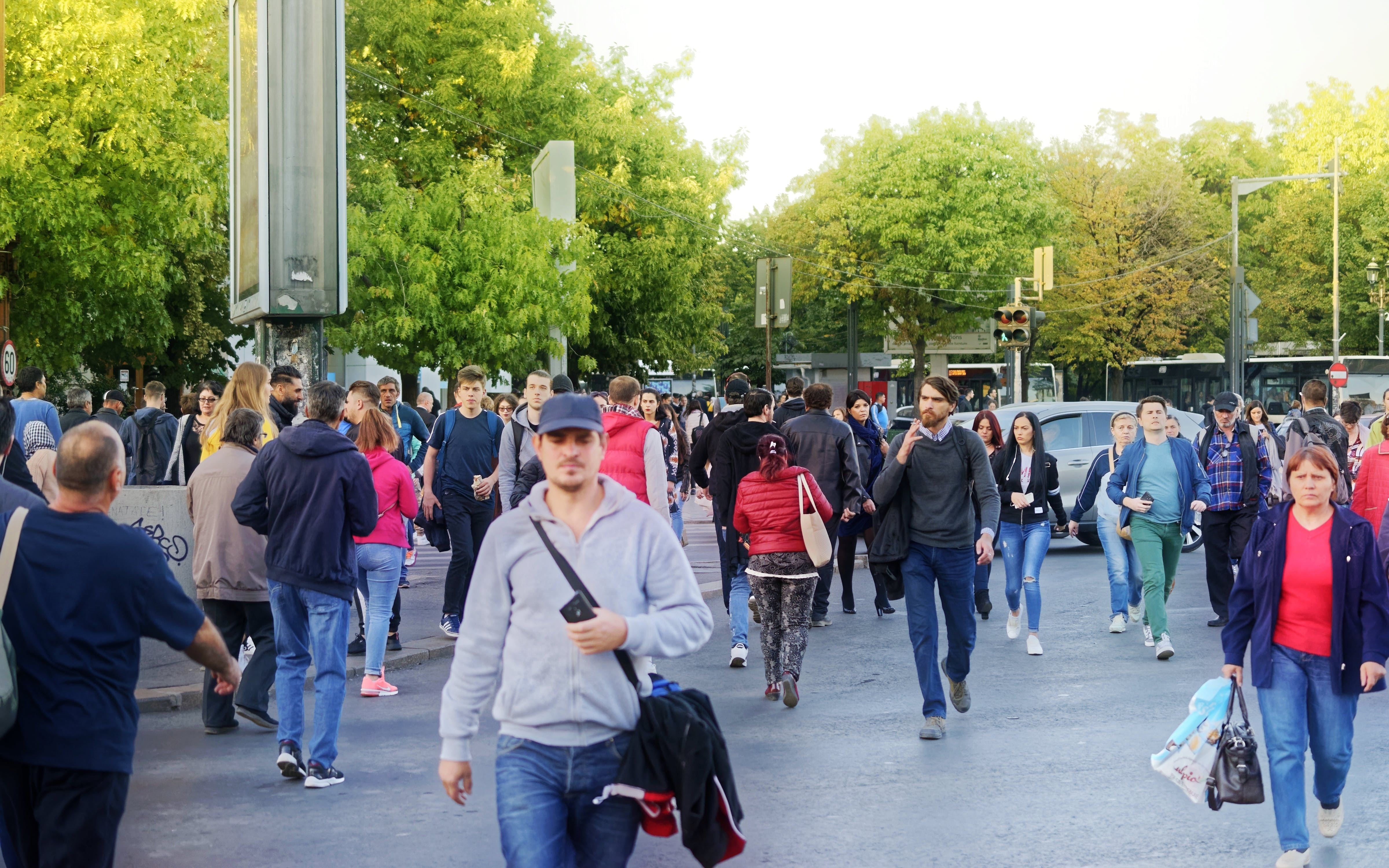 Free stock photo of crossing, pedestrians, people, trees