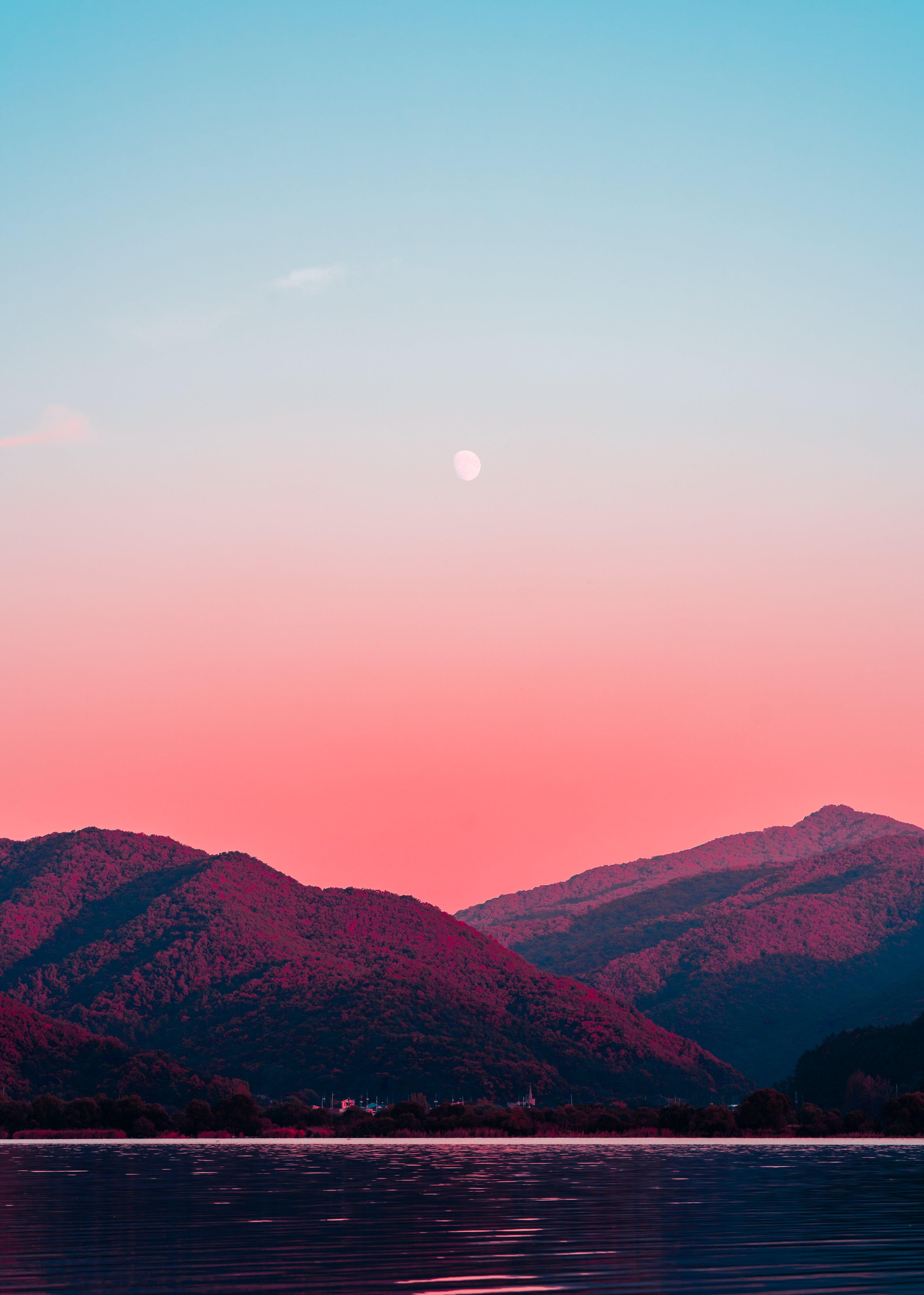 グラデーション, 半月, 夕方, 夜明けの無料の写真素材