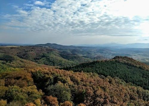 Foto stok gratis gunung, hutan, jarak, langit