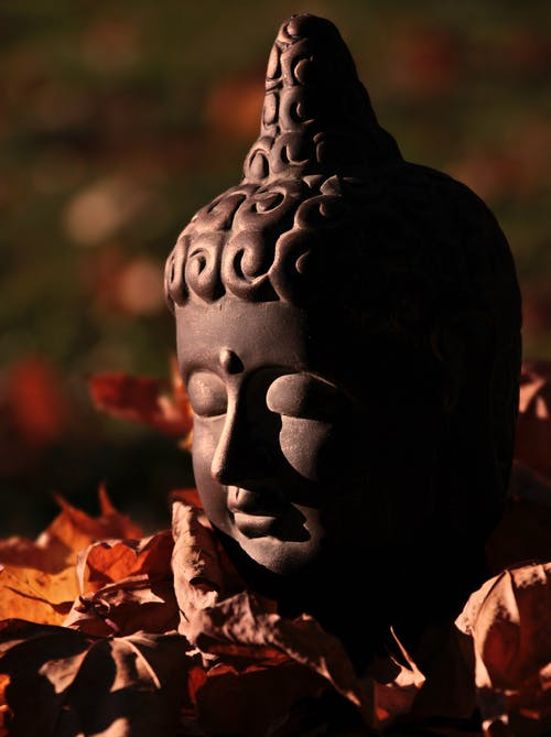 Free stock photo of asia, buddha, Buddhism, creative