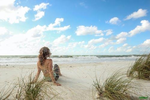 海灘, 风筝冲浪马可伊斯兰教 的 免费素材照片