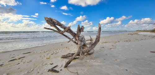 海灘, 马可·伊斯兰 的 免费素材照片