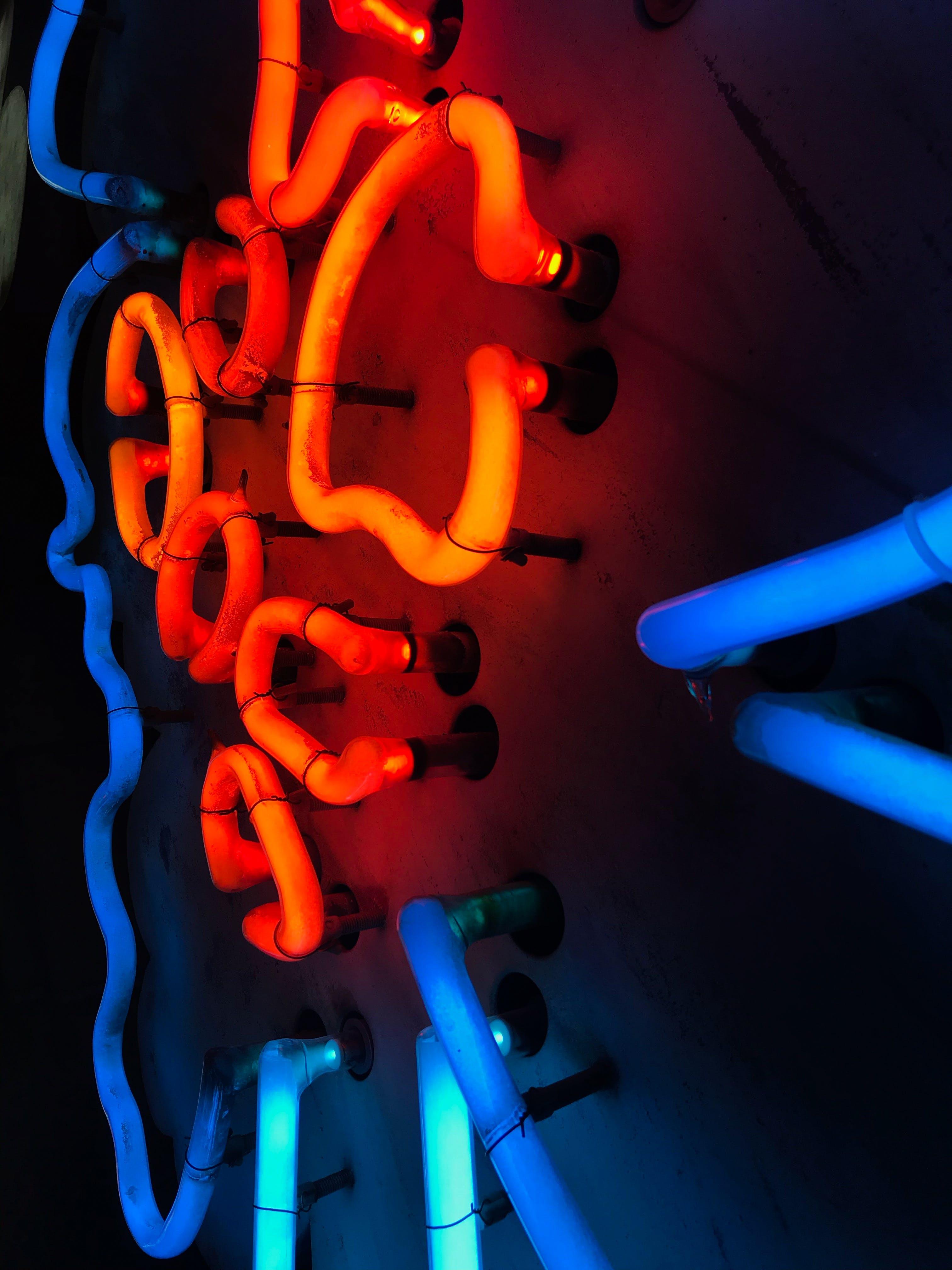 Free stock photo of blue, neon, neon light, Neon muzeum