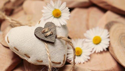 Immagine gratuita di amore, aromaterapia, bianco, decorativo