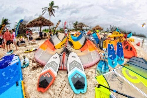 cabrinha, cabrinhakite, 海灘 的 免费素材照片