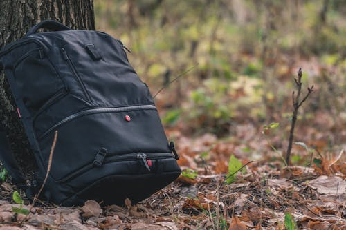 Gray Backpack Beside Tree