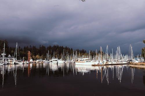 Free stock photo of boat, boat ferry, british columbia