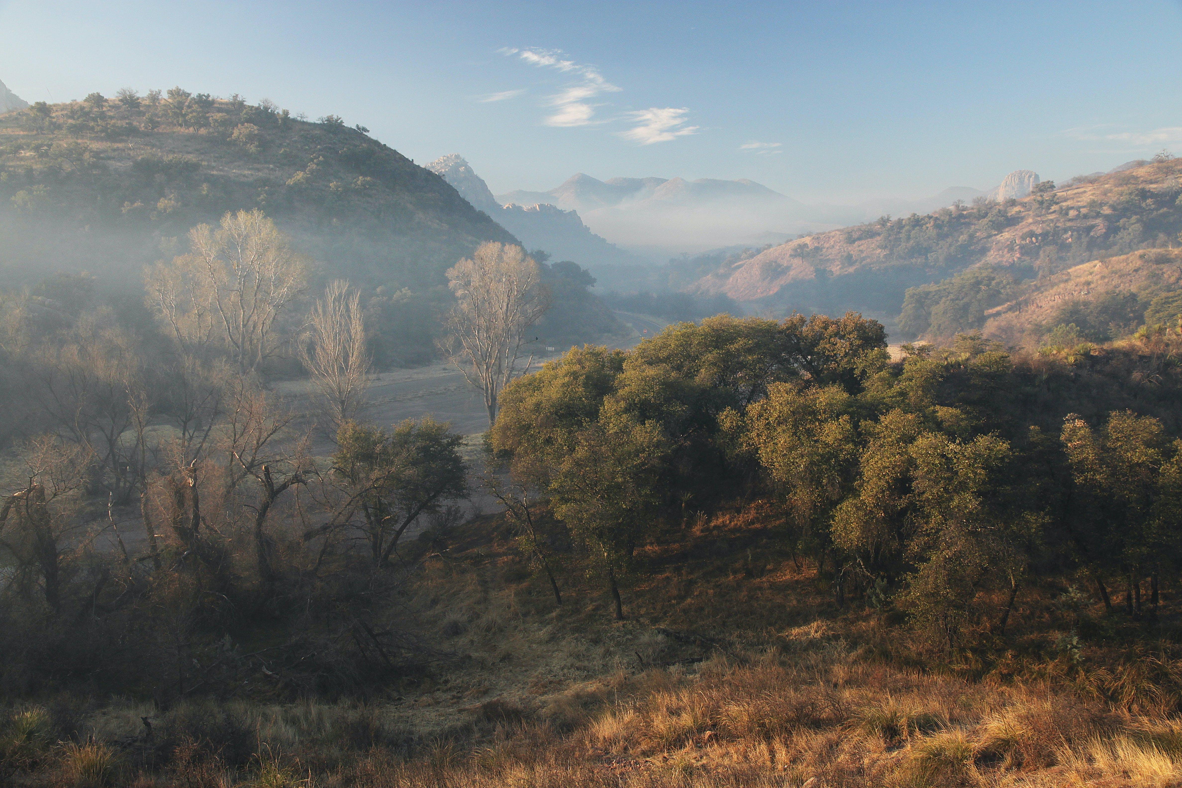 Kostenloses Stock Foto zu bäume, berg, hügel, landschaft
