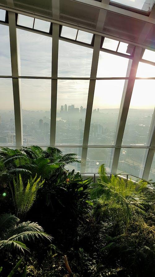 20 펜처치 스트리트, 런던, 하늘 정원의 무료 스톡 사진