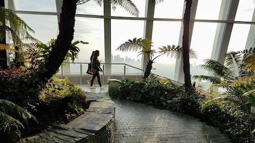 คลังภาพถ่ายฟรี ของ 20 เฟนเชิร์ชสตรีท, กลางวัน, การท่องเที่ยว, ดอกไม้