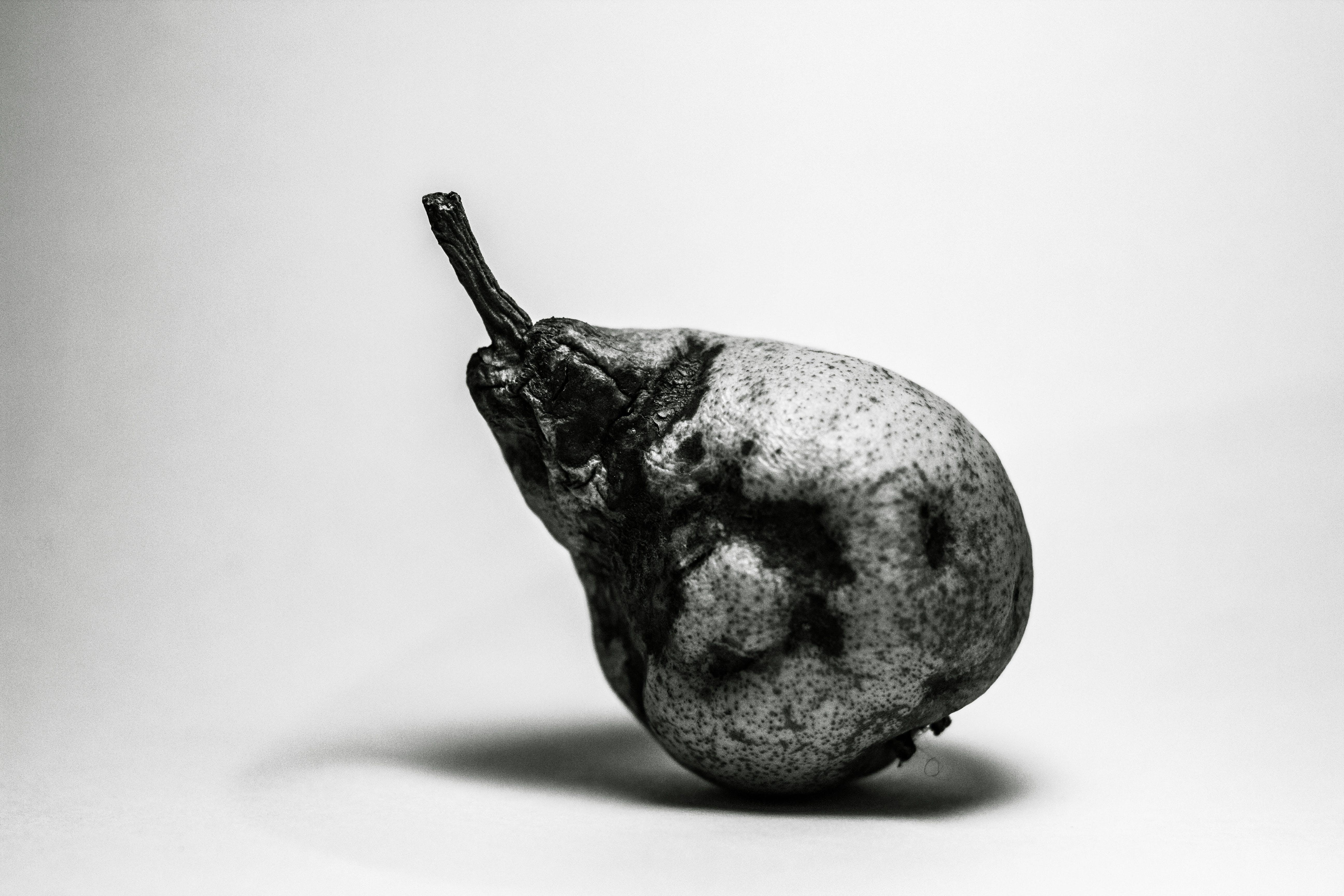 Základová fotografie zdarma na téma černobílá, hnilobou, hruška, kontrast