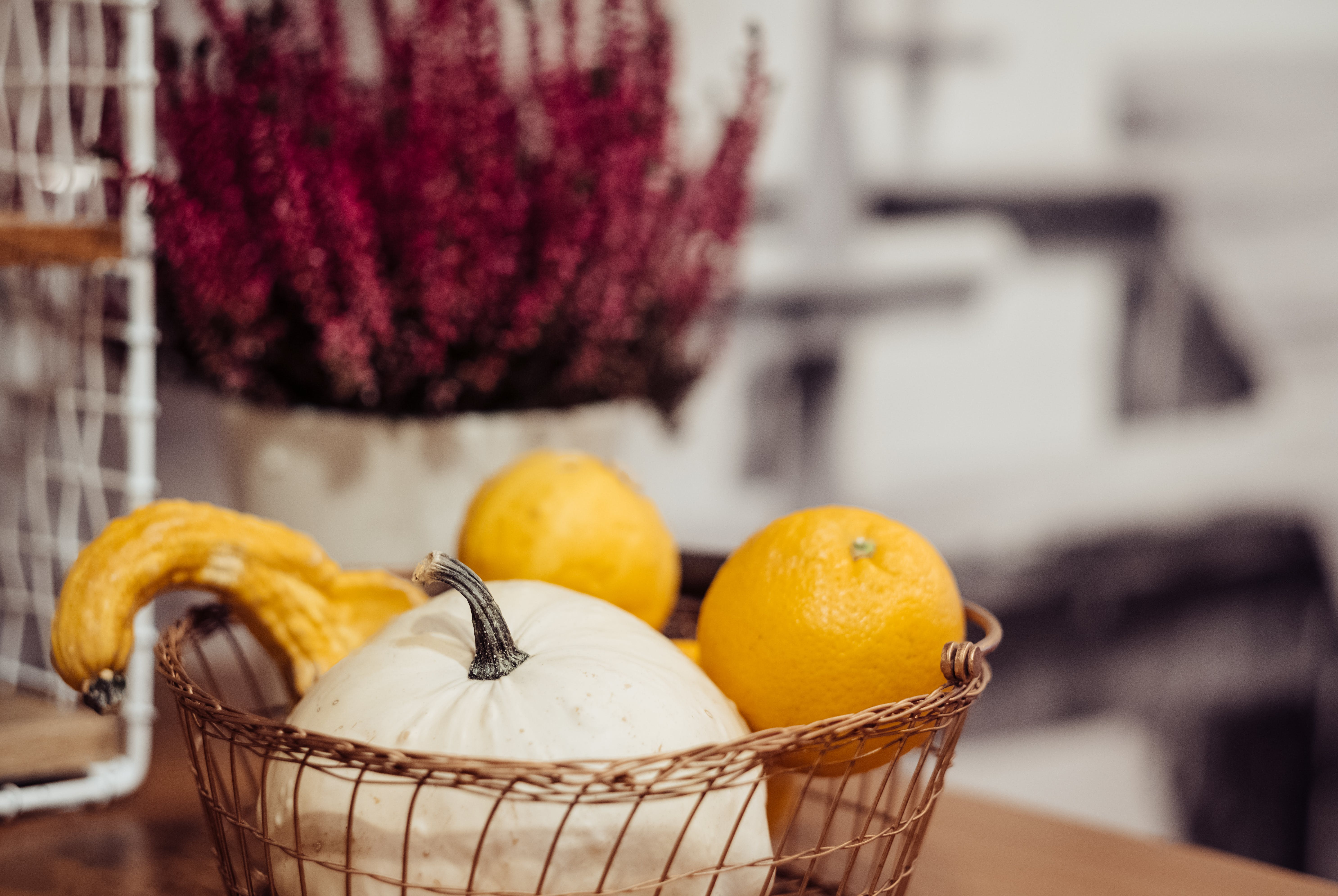 Selective Focus Photography of Orange Citrus Fruits and White Pumpkin in Basket
