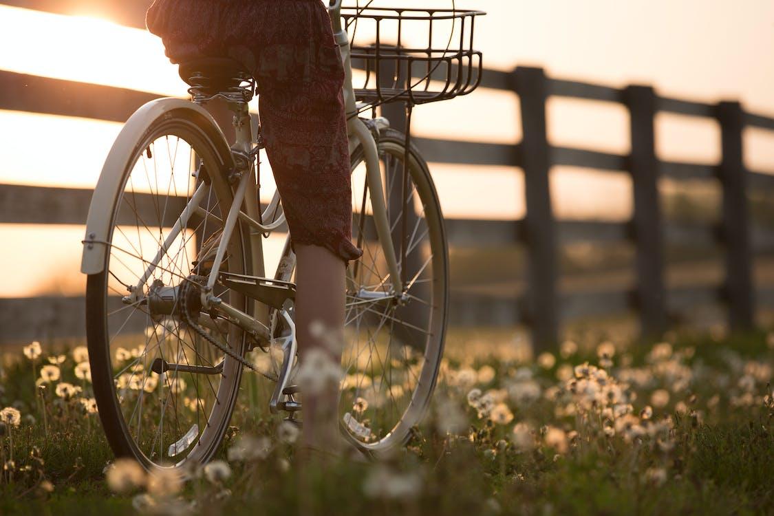 Základová fotografie zdarma na téma biker, dopravní systém, jízda