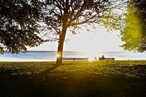 Free stock photo of Morning sun rasie