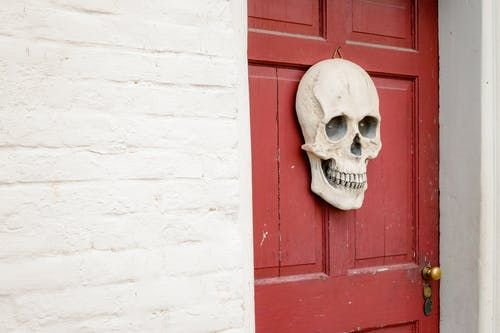 White Skull Decor