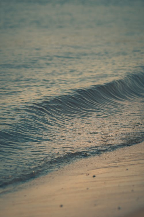 Immagine gratuita di acqua, lago michigan, sabbia