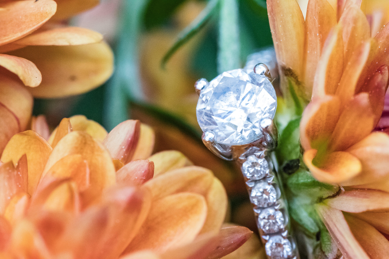 anne, makro, nişan yüzüğü içeren Ücretsiz stok fotoğraf