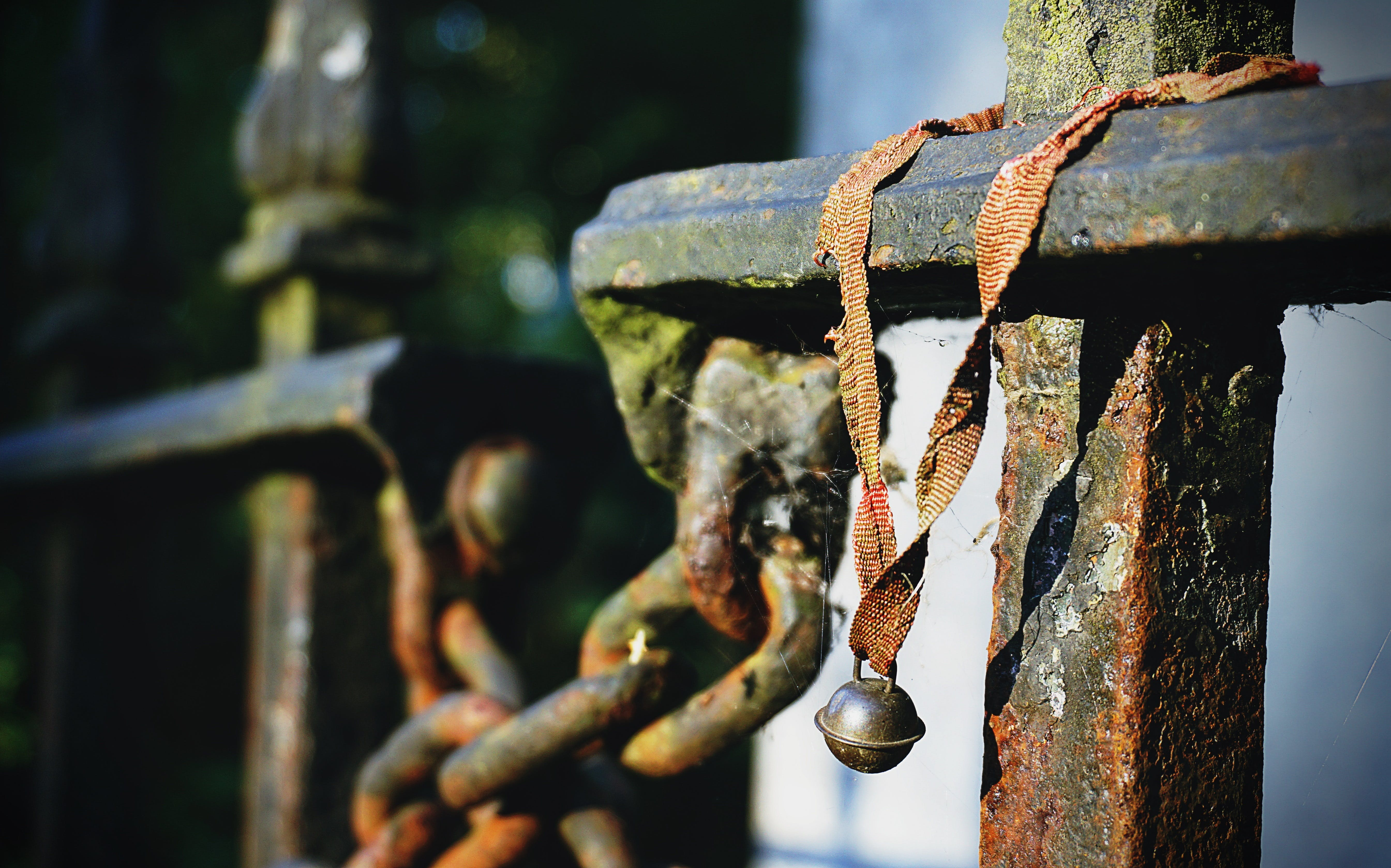 Free stock photo of bell, cemetery, lost, metal railings
