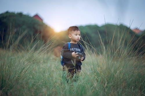 Foto stok gratis anak, belum tua, bidang, cute