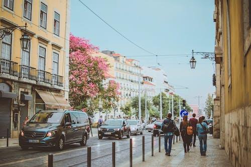 People Walking on Side Walk Between Road and Buildings