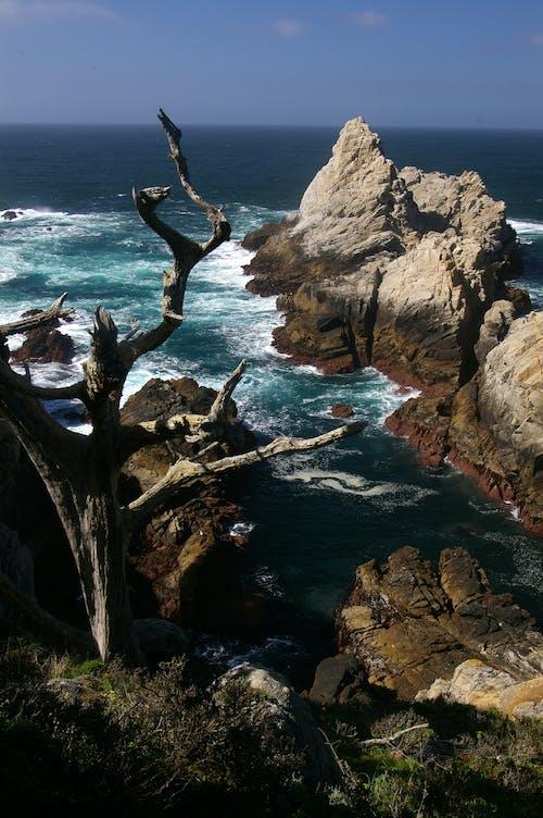Gratis stockfoto met daglicht, golven, h2o, high angle shot