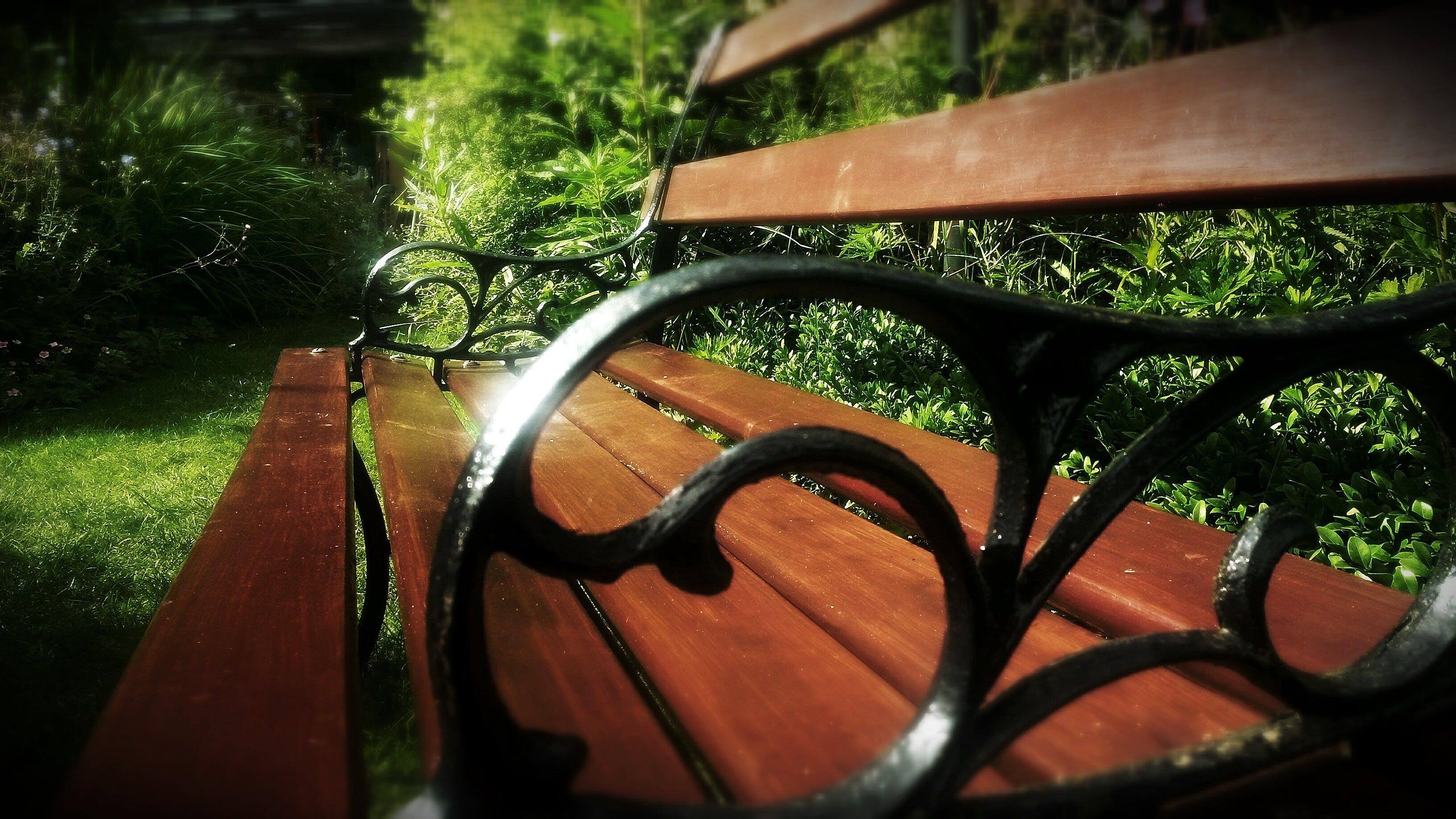 Free stock photo of bench, garden, seat, park bench