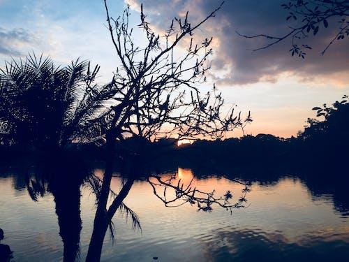 คลังภาพถ่ายฟรี ของ ตะวันลับฟ้า, ท้องฟ้าตอนเย็น, บราซิล, เซาเปาโล
