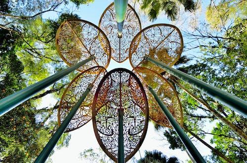 Fotos de stock gratuitas de arboles, diseño, foto de ángulo bajo, parque