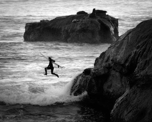 Foto d'estoc gratuïta de blanc i negre, el punt, esport aquàtic, fer surf