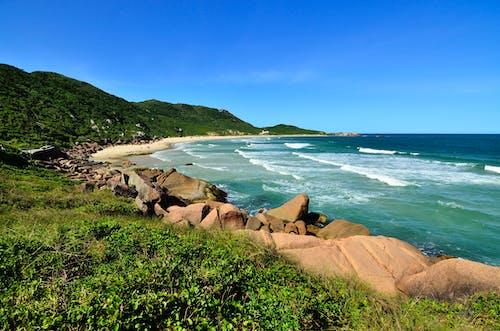 Immagine gratuita di acqua, litorale, mare, natura
