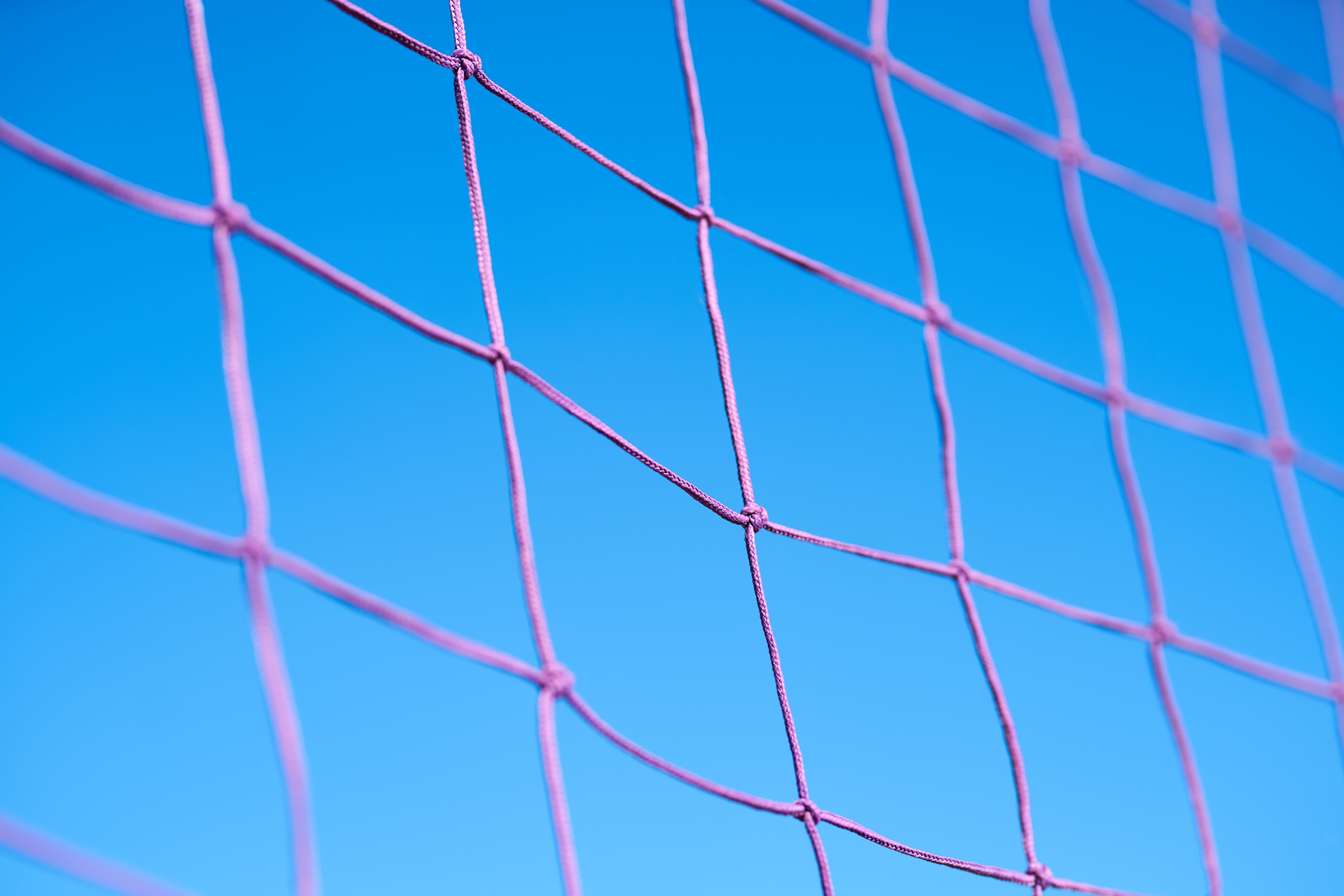 Purple Volleyball Net