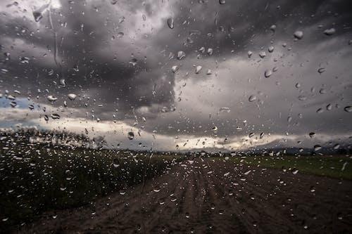 玻璃, 雨, 雨滴 的 免费素材照片