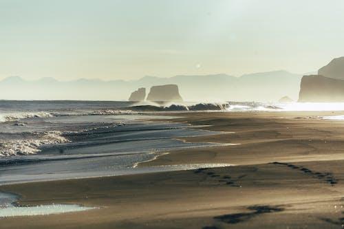 러시아, 모래, 바다, 바다 경치의 무료 스톡 사진