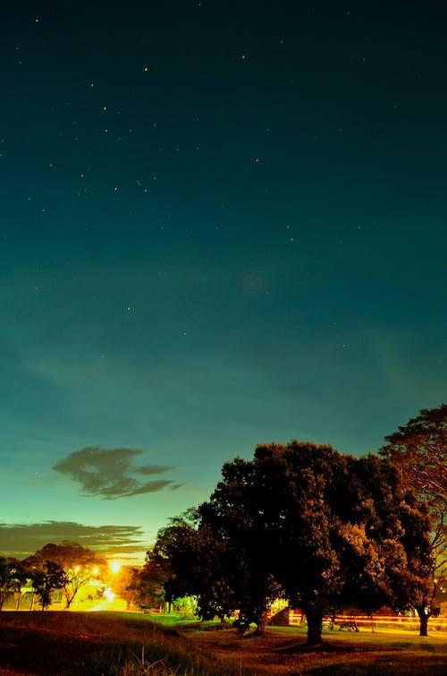 Gratis arkivbilde med daggry, gress, himmel, landskap