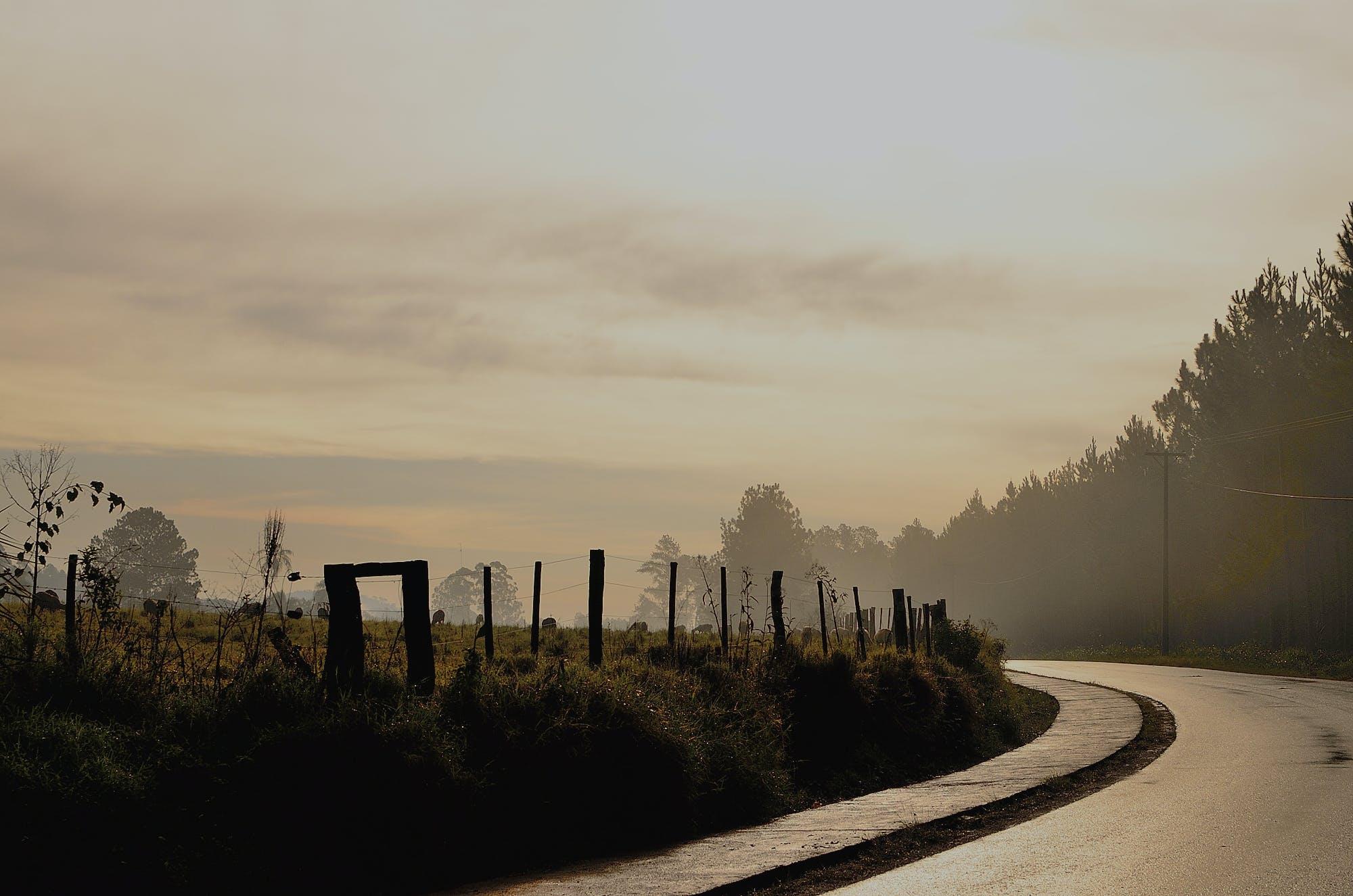 Black Curve Asphalt Road Beside Green Field