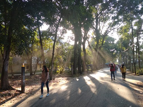 Immagine gratuita di pomeriggio, università