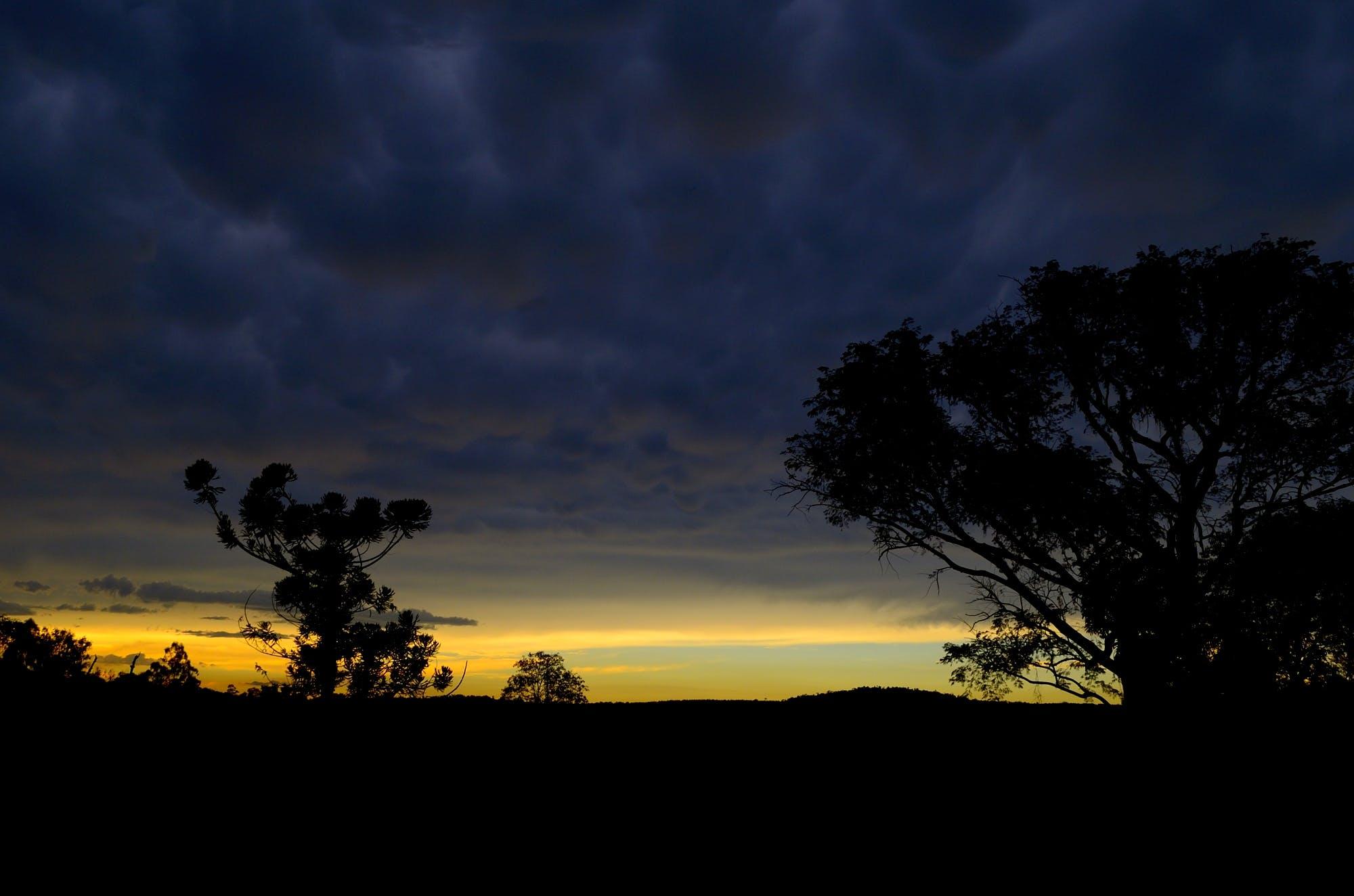 バックライト付き, 地平線, 夜明け, 曇りの無料の写真素材