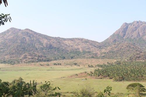 Free stock photo of hill, Hill town, Kodai, Kodaikanal