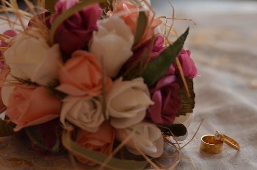 Free stock photo of pre wedding, wedding, wedding day