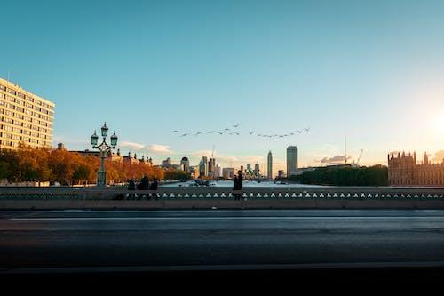 Kostenloses Stock Foto zu 4k wallpaper, abend, architektur, bäume
