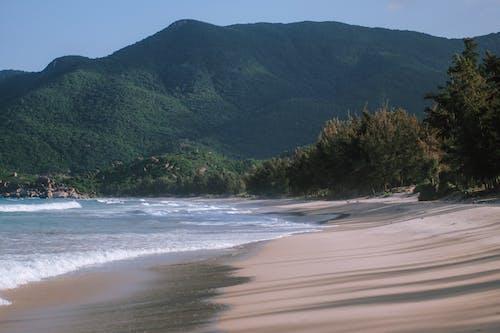 Foto profissional grátis de areia, ecológico, litoral, montanha