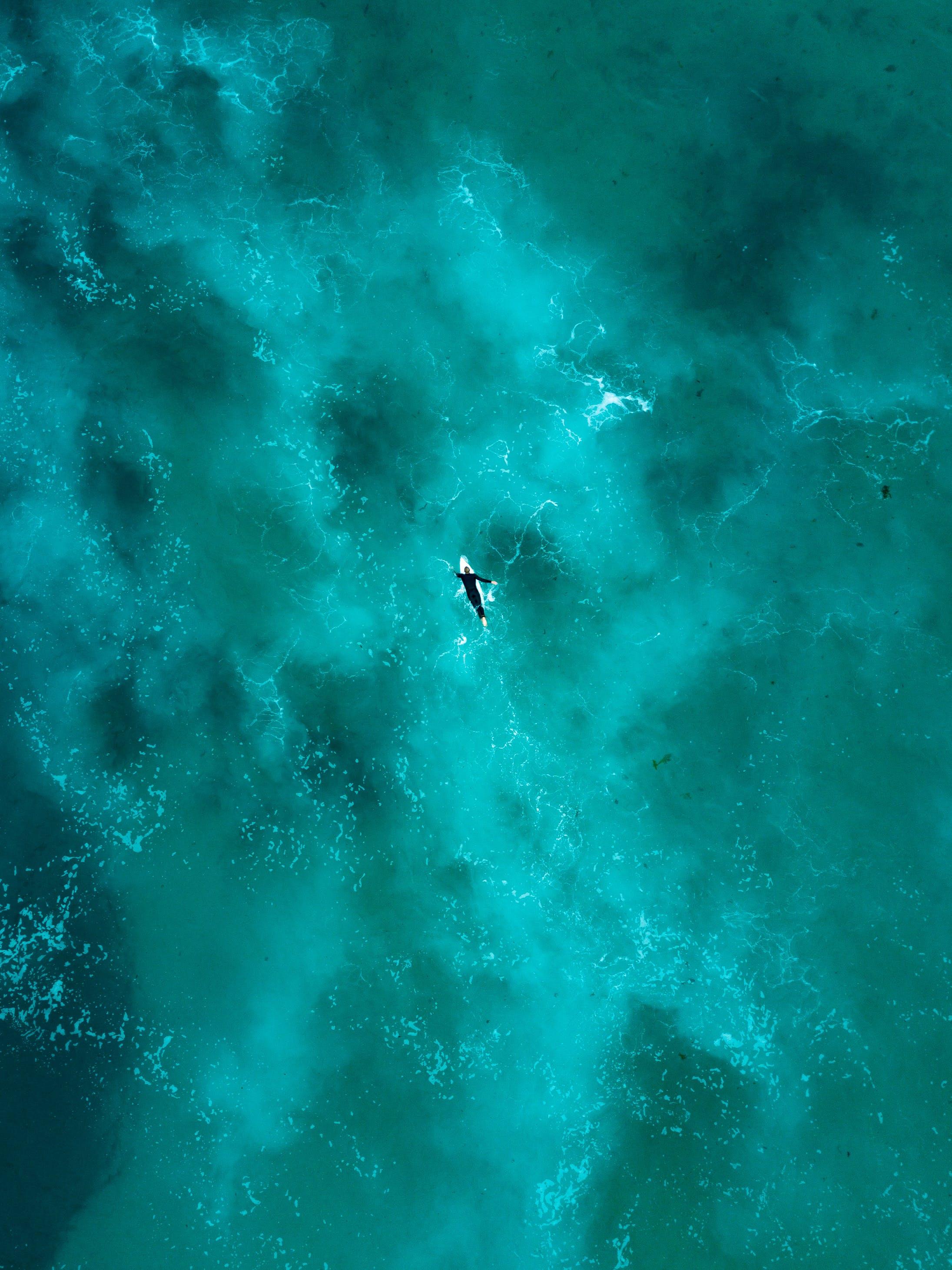 Základová fotografie zdarma na téma hluboký, korál, letecký snímek, mávání