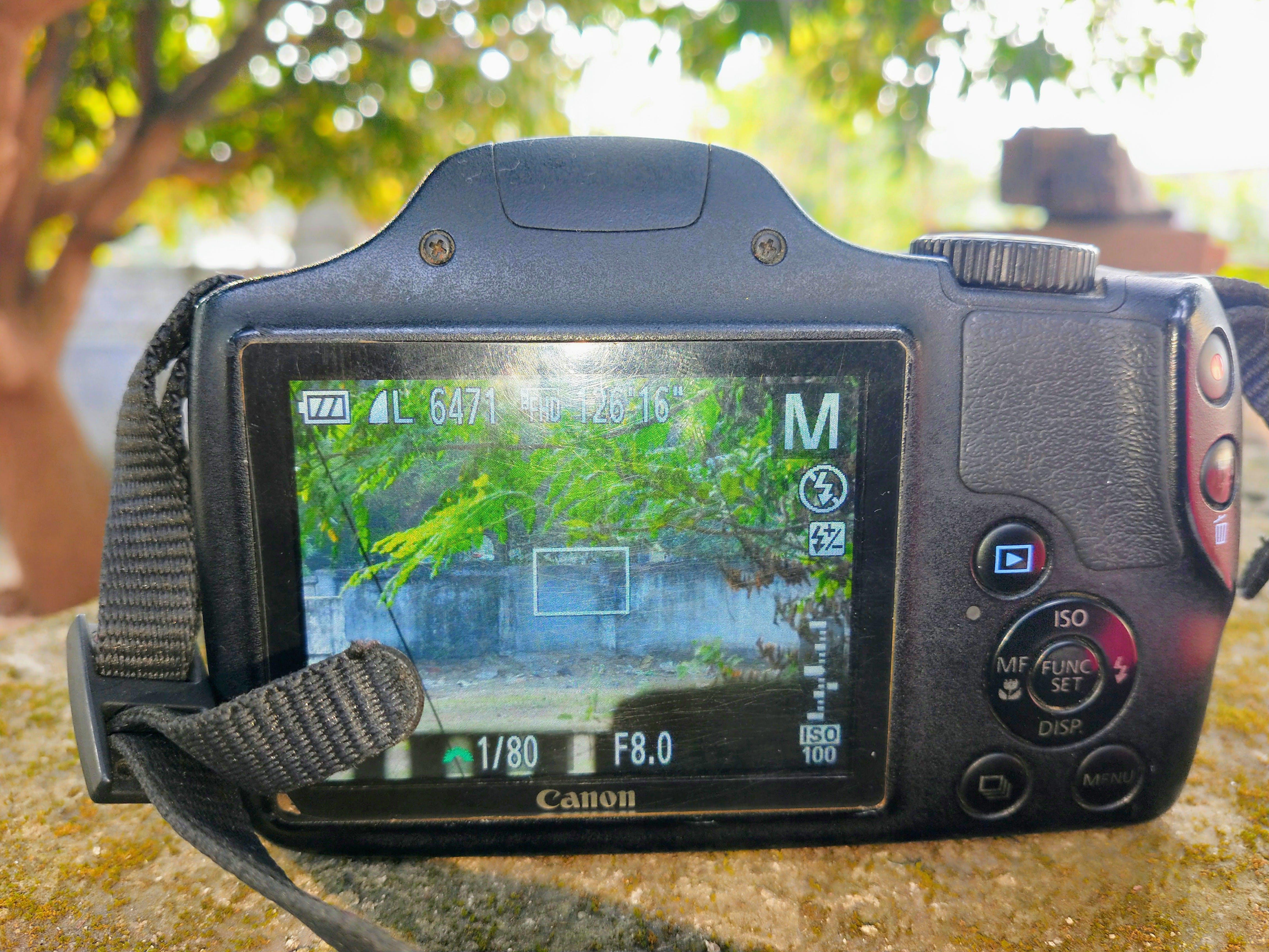 Free stock photo of #Canon