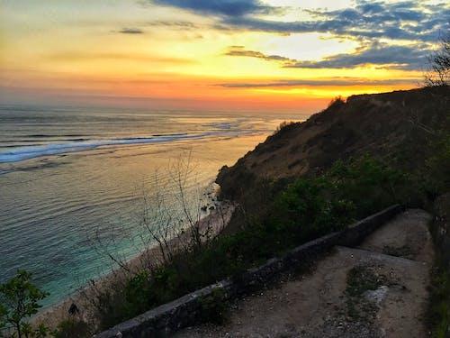 Fotos de stock gratuitas de mar, peces, playa, puesta de sol