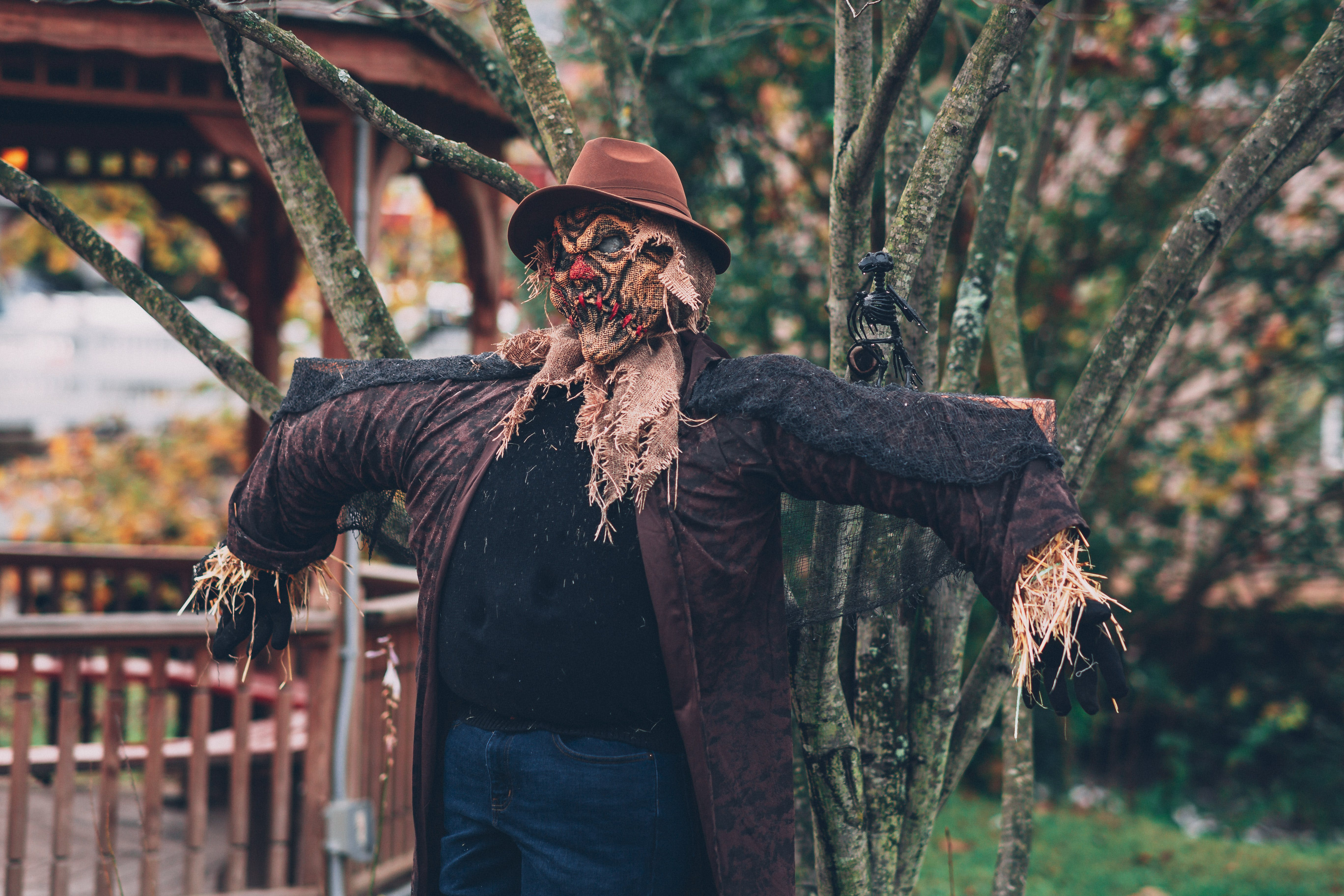 Scarecrow Beside Tree