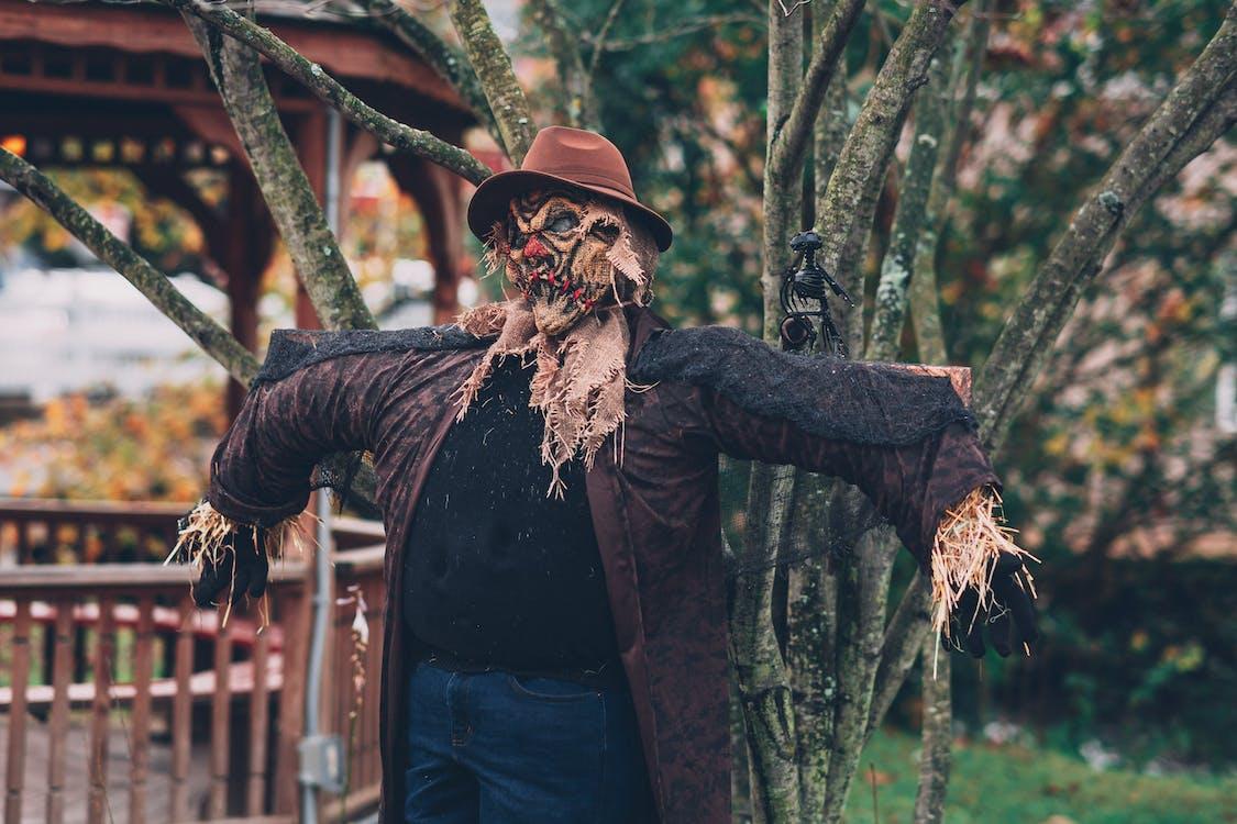 Scarecrow Beside Tree