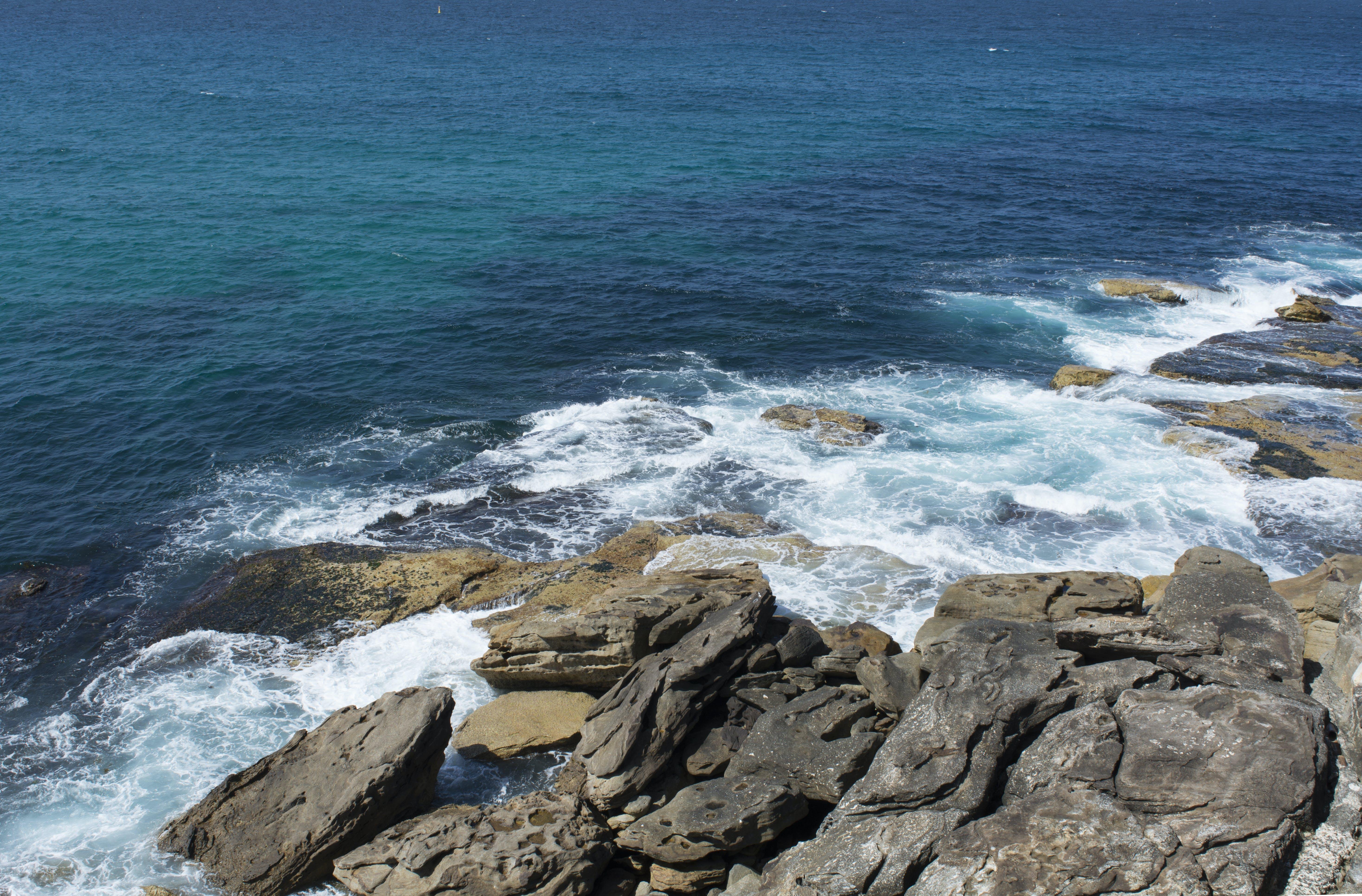 Free stock photo of Bondi, Bondi Beach, bondi horizon, horizon