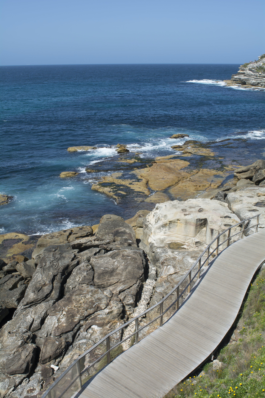 Gratis stockfoto met Australië, blikveld, bondi, bondi beach