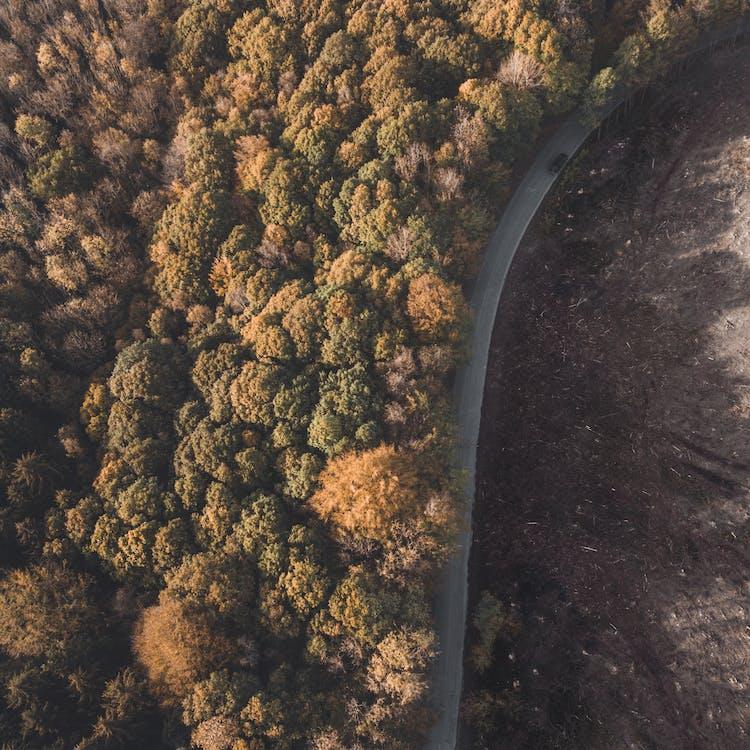 flyfoto, fugleperspektiv, ovenfra