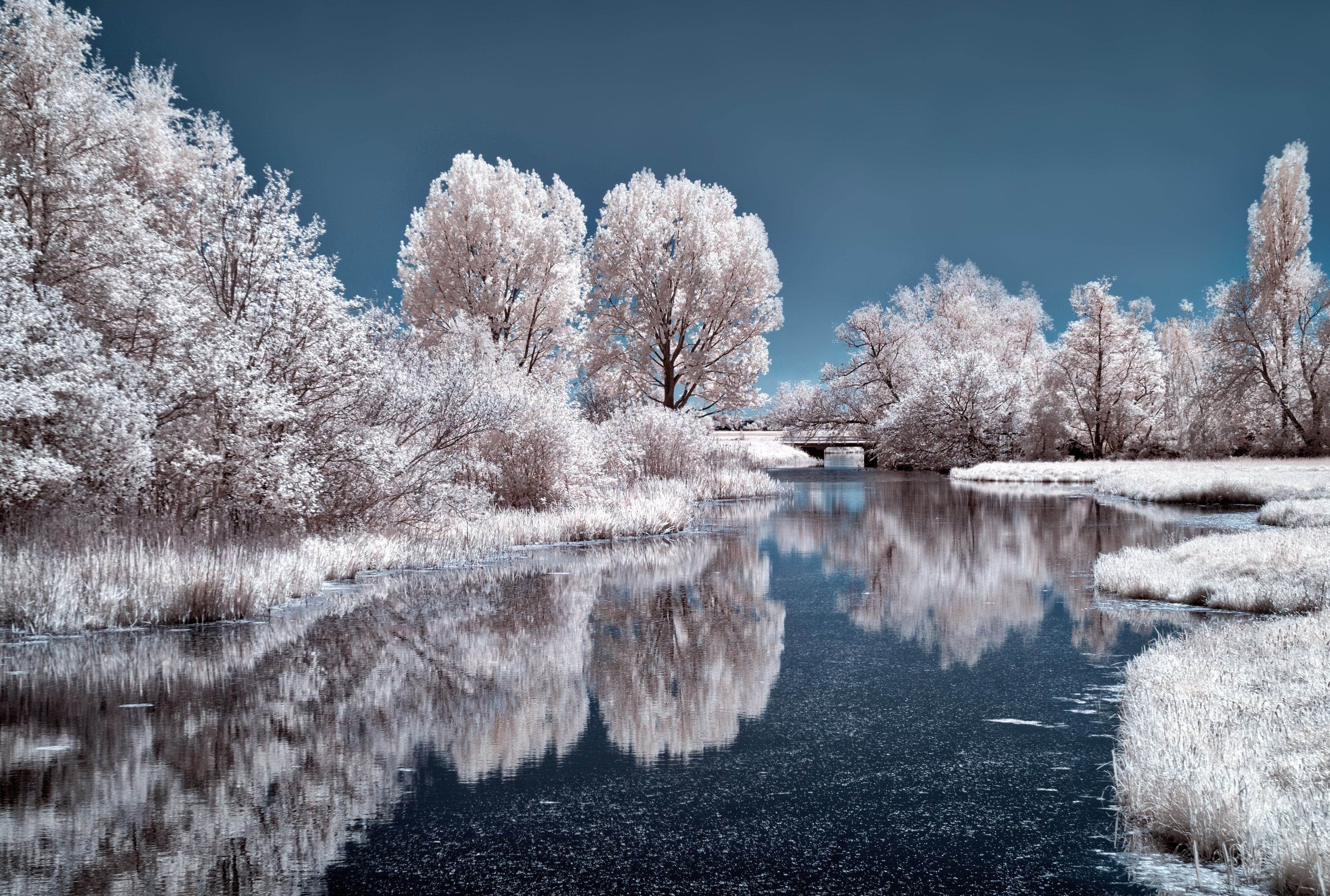 winterbilder · pexels · kostenlose stock fotos